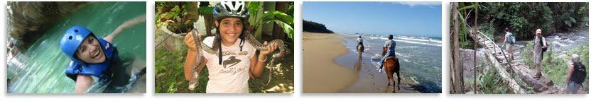 iguana mama tours