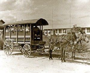 schooltransport-300×242
