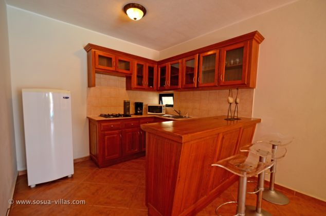 Sosua condo kitchen