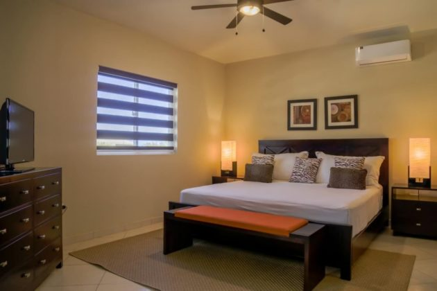 modern blinds in the rooms